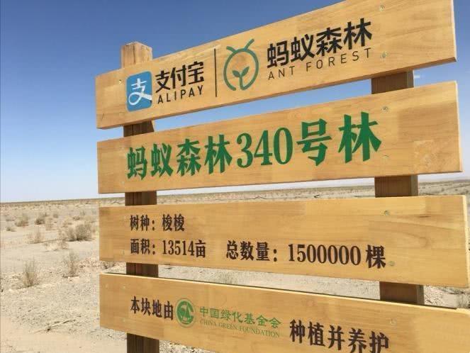 生态志愿者书写荒漠中绿色传奇